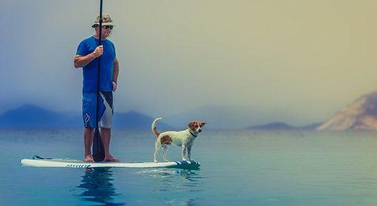 tablas de paddle surf económicas